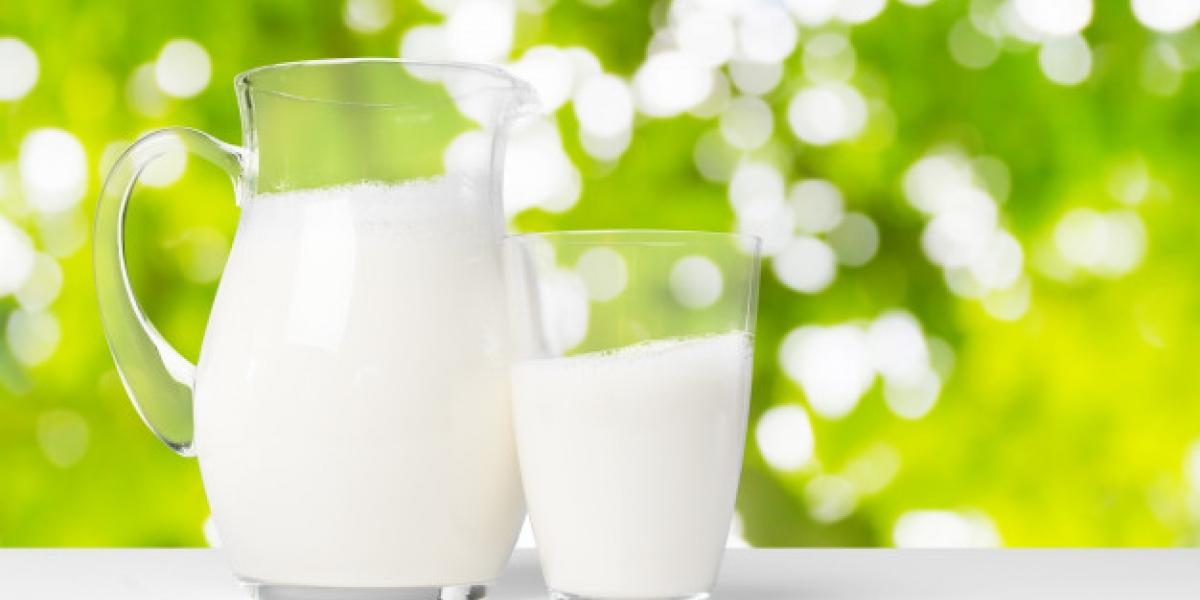 Çiğ Süt Nedir?