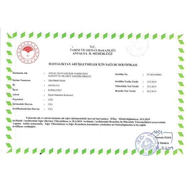 sertifika-4